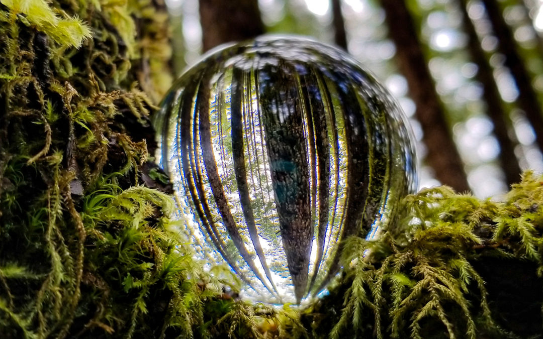 Through a crystal ball