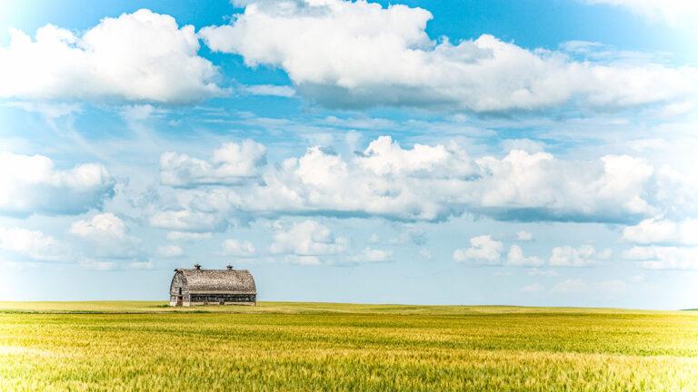 Canadian Prairie Summer Landscape